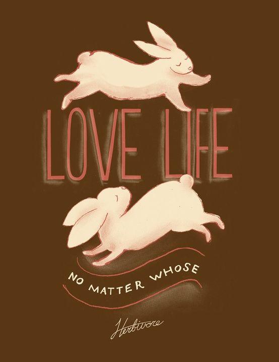 Ama la vida, no importa la de quien.